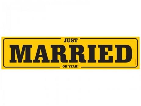 MATRICULA PARA COCHE NOVIOS  Just Married 5